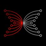 Input Output (IOHK)